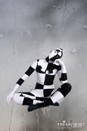 Черно-Белый Арлекин