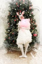 Следуй за Белым Кроликом!