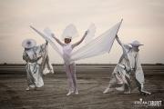 Белое Шоу - Птица